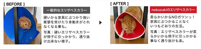 猫のエリザベスカラー生活が快適に変化した様子