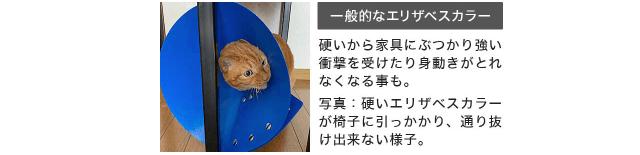 硬いエリザベスカラーが家具にぶつかり身動きの出来ない猫