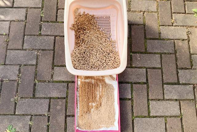 猫砂10日目の様子