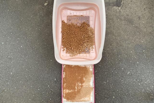 猫砂21日目の様子