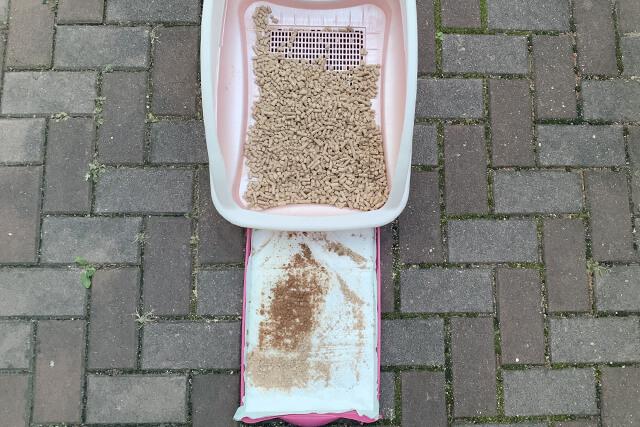 猫砂25日目の様子