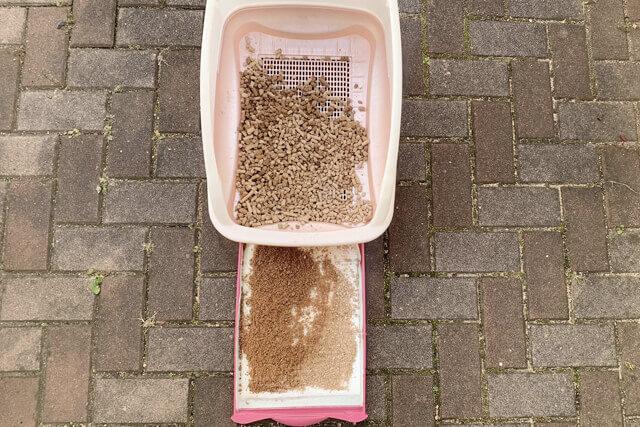 猫砂27日目の様子