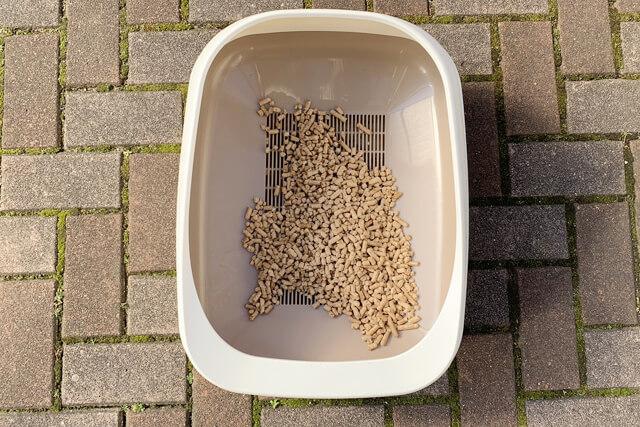 猫砂15日目の様子