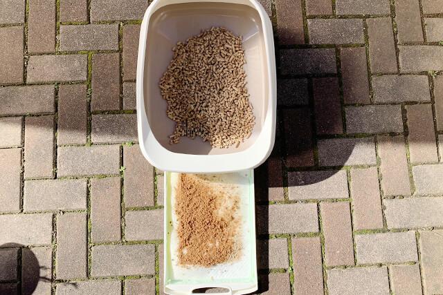 猫砂22日目の様子