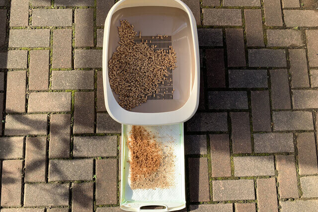 猫砂3日目の様子