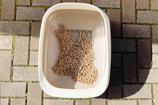 猫砂30日目の様子