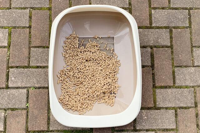 猫砂7日目の様子