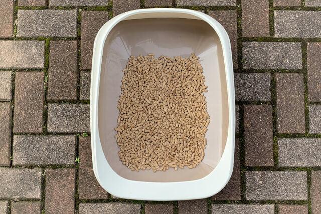 猫砂を1L入れた様子