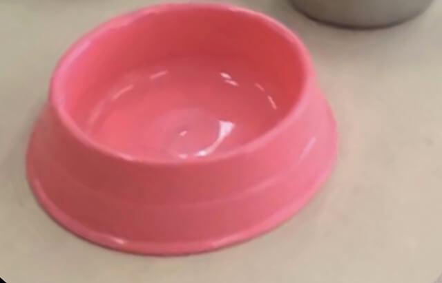 実験後のプラスチック食器の傷