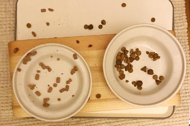 食べづらい食器で器の外にフードがこぼれ落ちている様子