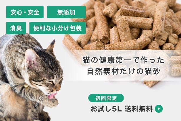 初回限定・猫砂5L送料無料
