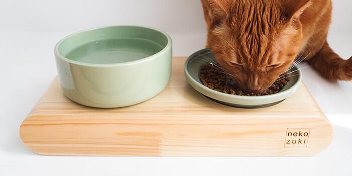猫の食事姿勢をサポート
