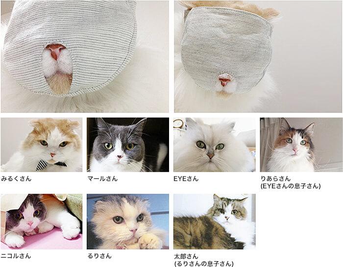 鼻ぺちゃ猫モニター