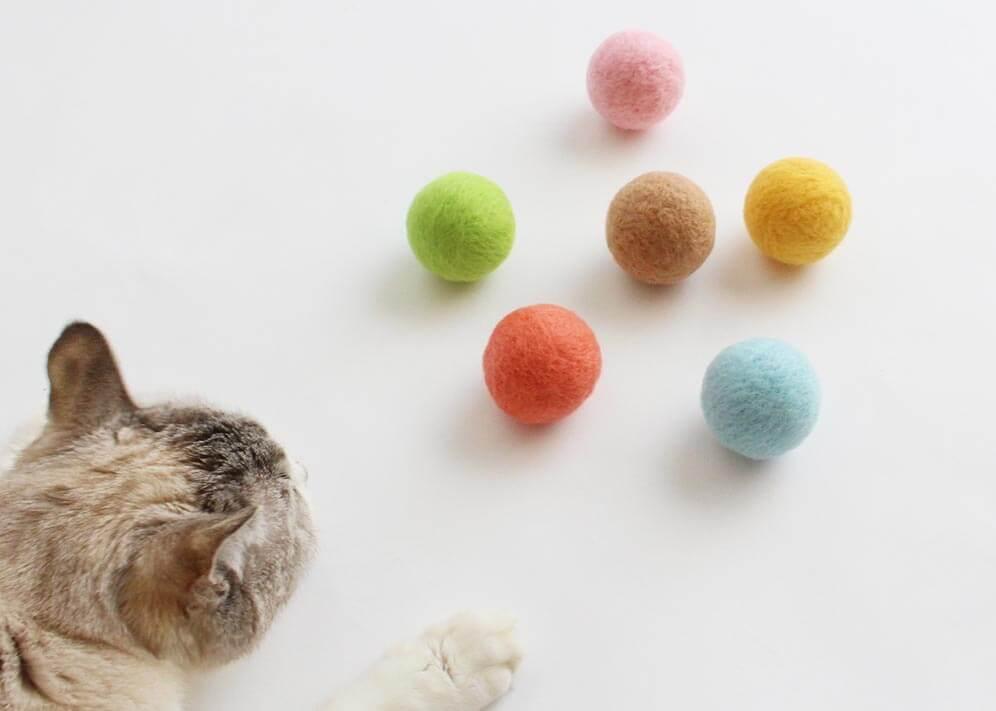猫のおもちゃ『ねこずきころころ』で運動不足解消