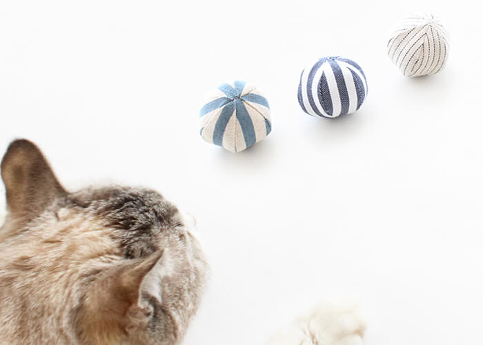 猫のおもちゃ『ねこずきころころファブリック』で運動不足解消