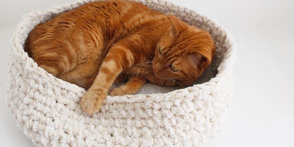 コットン素材の心地よい猫用ベッド