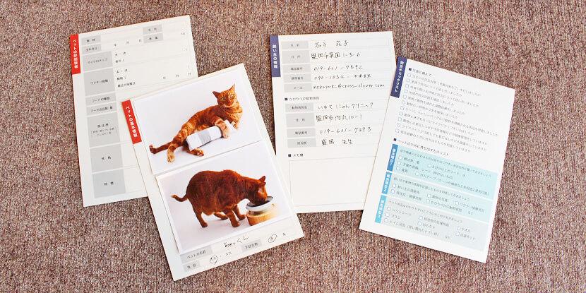 猫用防災カード