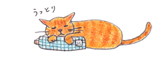 猫用枕・クッションとしておすすめ