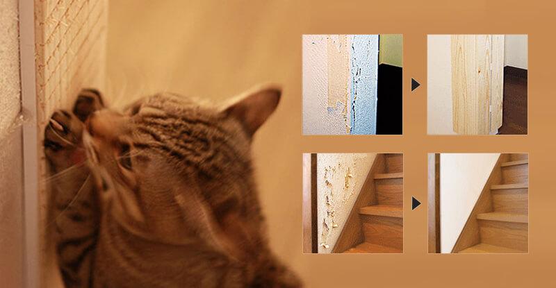 猫の爪とぎから壁を保護『壁まもる君』