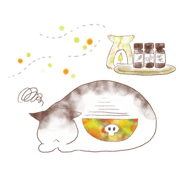 猫とアロマの危険性