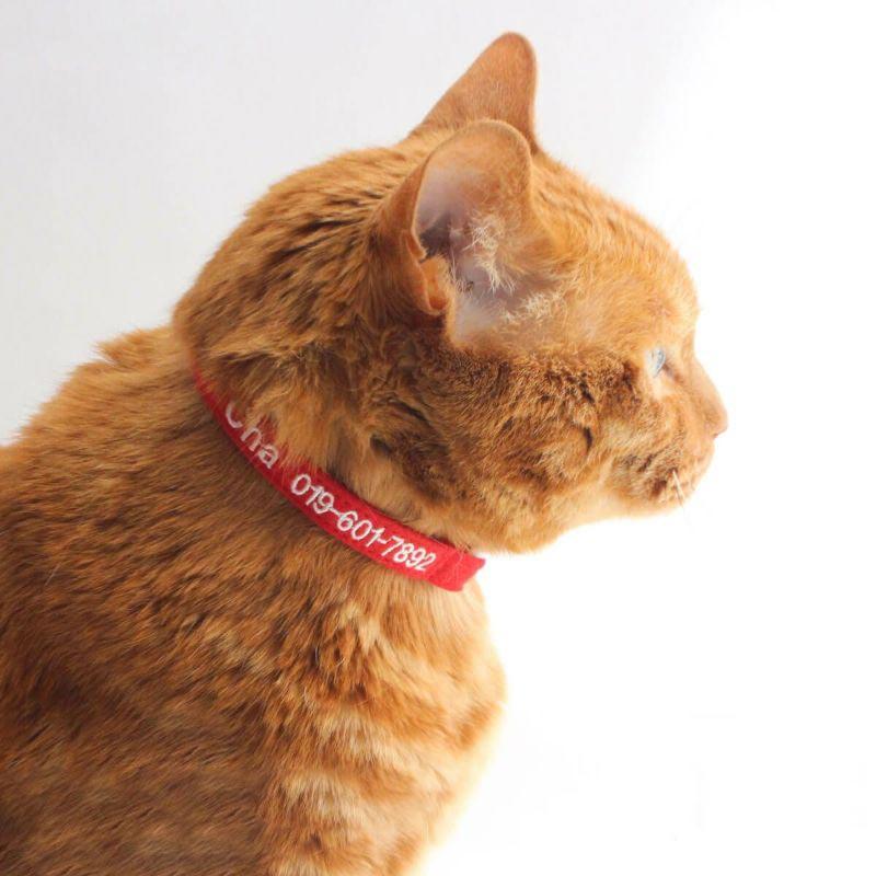 猫の防災や脱走対策に。連絡先を刺繍できる軽い首輪